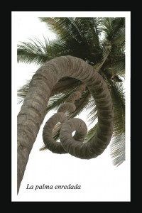 La palmera enredada