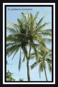 La palmera resortera