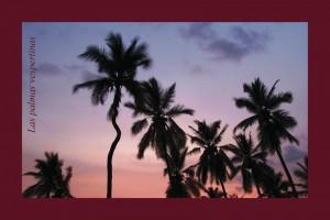 Las palmeras vespertinas